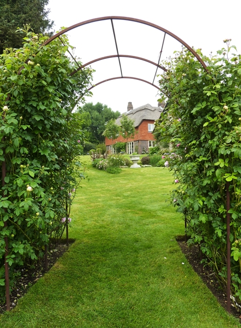 Hambledon rose arch - June 2013