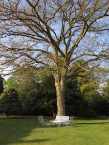 Lansdown furniture (1)