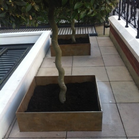 Bay Tree Planters, London